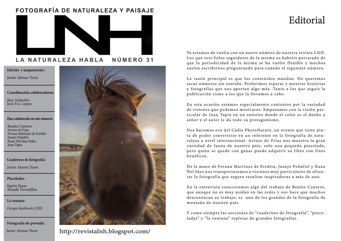 LNH NUM31_Paisaje en BN1
